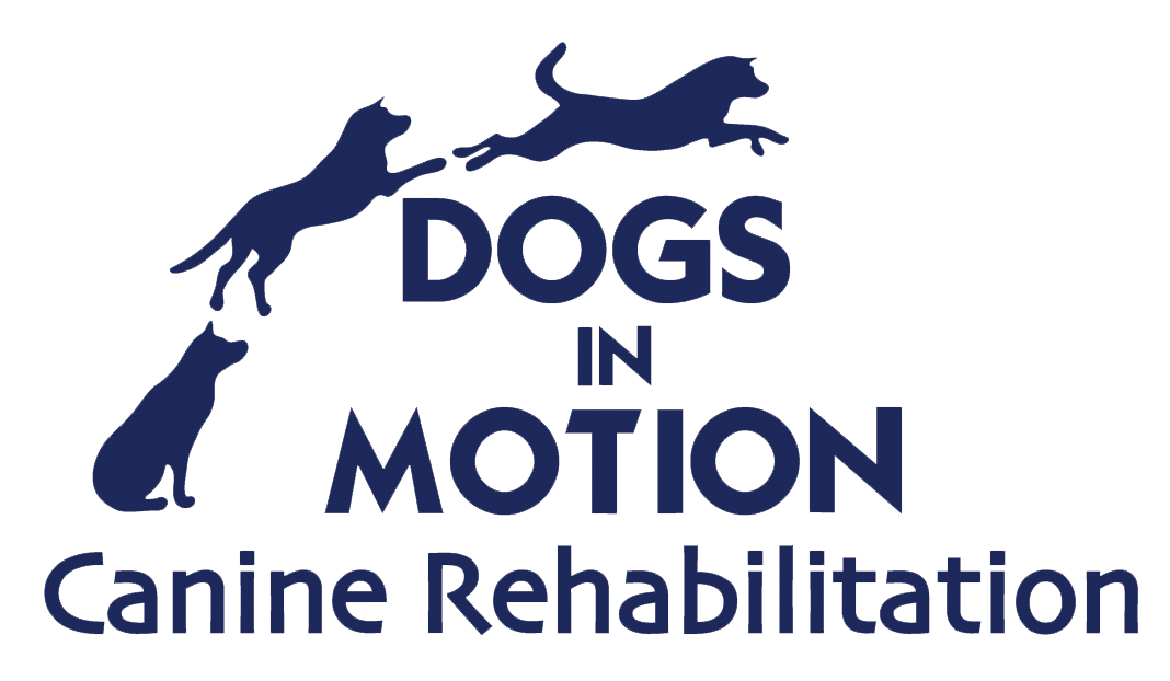 Dogs In Motion Canine Rehabilitation