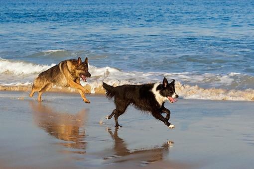 running-in-sand