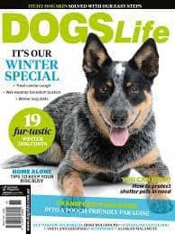 Dogs-Life-Magazine