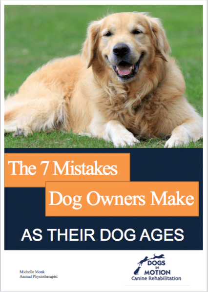 Dogs in Motion Canine Rehabilitation Cover of ebook 7 Mistakes dog owners make as their dog ages by Michelle Monk